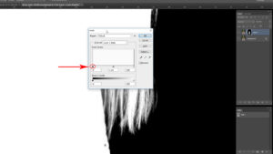 Click Layer into Negative Mask